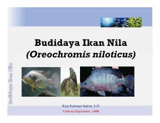 Budidaya_Nila.pdf