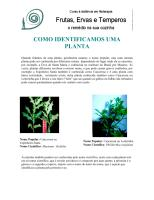 Frutas, Ervas e Temperos na Cozinha.pdf