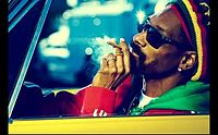 Snoop Dogg - Smoke Weed Everyday (Mobile).3gp