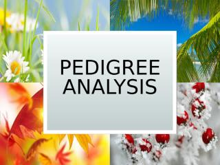 Pedigree Analysis.ppt