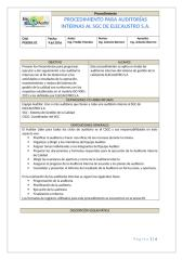 df97ce04_PROCEDIMIENTO_DE_AUDITORIA.xlsx.docx